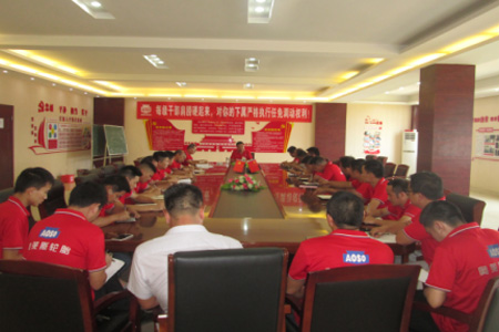 Wang Ruijun, Vice President of the Company, Organized a Special Discussion and Analysis Meeting